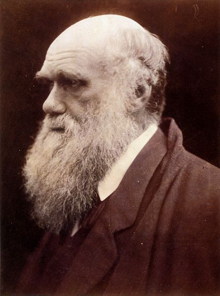 Charles Darwin was moved by evolution and biodiversity